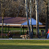 Warm, sunny weather brings out walkers at Fischer's Park, Harleysville Jan. 25, 2017.  (Bob Raines--Digital First Media)