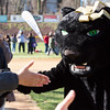 The Panther runs around the field, giving high-fives to Little League players.  Rachel Wisniewski — For Digital First Media