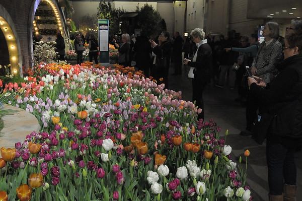 Philadelphia Flower Show held at the Pennsylvania Convention Center