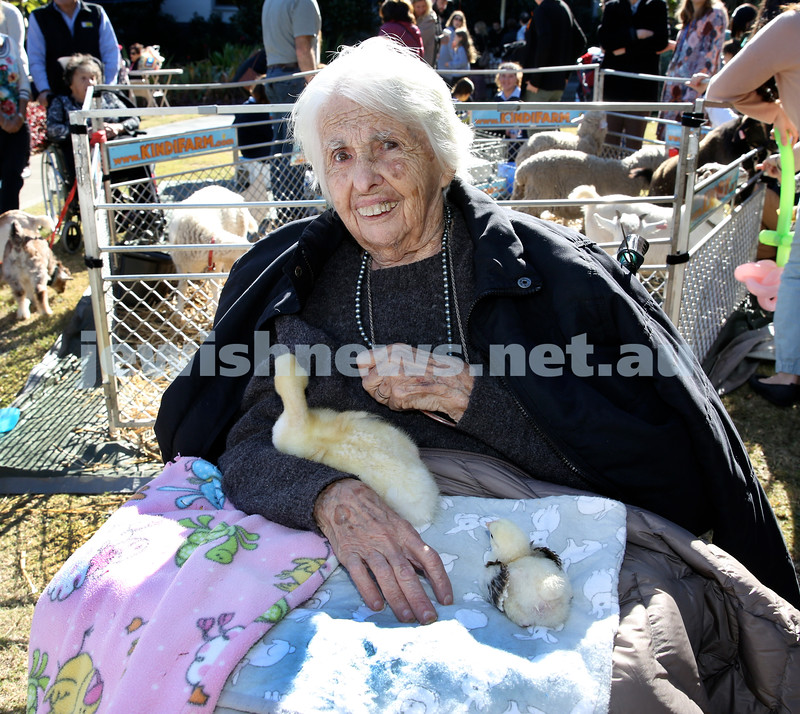 Montefiore Lag B'Omer Family Fun Day. Bonnie Keen with some ducks. Pic Noel Kessel.