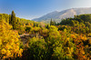 Fall foliage color in the valleys of rural Montenegro near the Kotor Lakes.