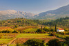Vineyards and fall foliage color in the valleys of rural Montenegro near the Kotor Lakes.