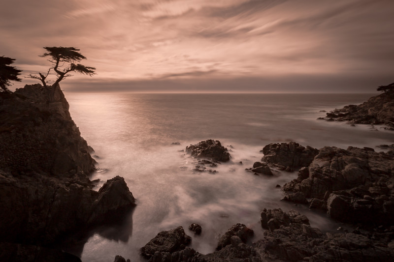 The Lone Cypress (Long exposure)