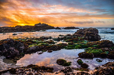 pacific grove-0440