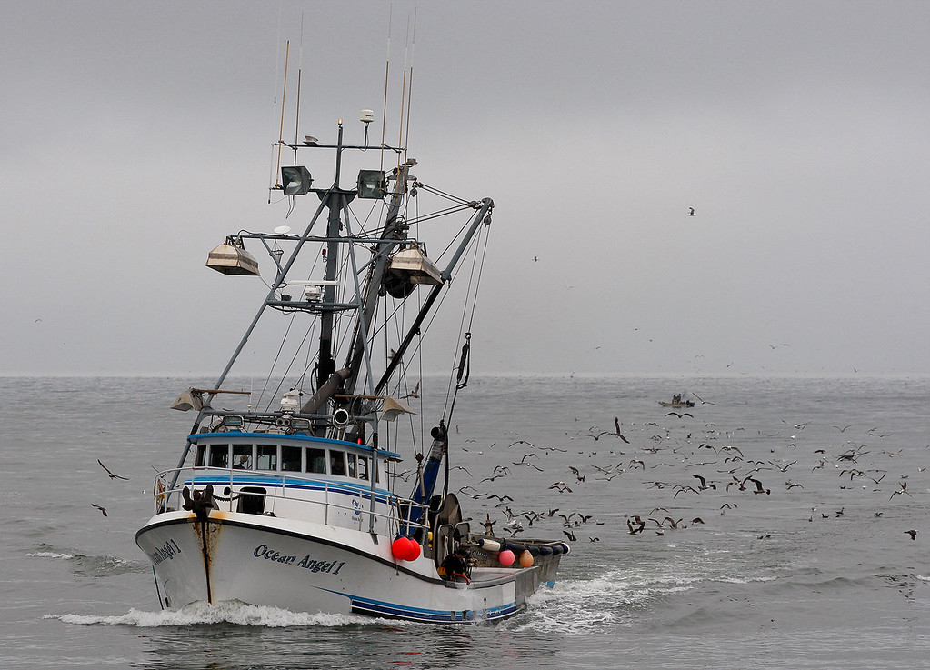 . The commercial fishing boat Ocean Angel 1 enters the Moss Landing Harbor on Monday, July 2, 2018.  (Vern Fisher - Monterey Herald)