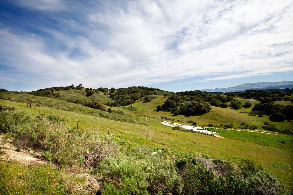 . Laguna Seca Recreation Area on Wednesday, March 15, 2017.  (Vern Fisher - Monterey Herald)