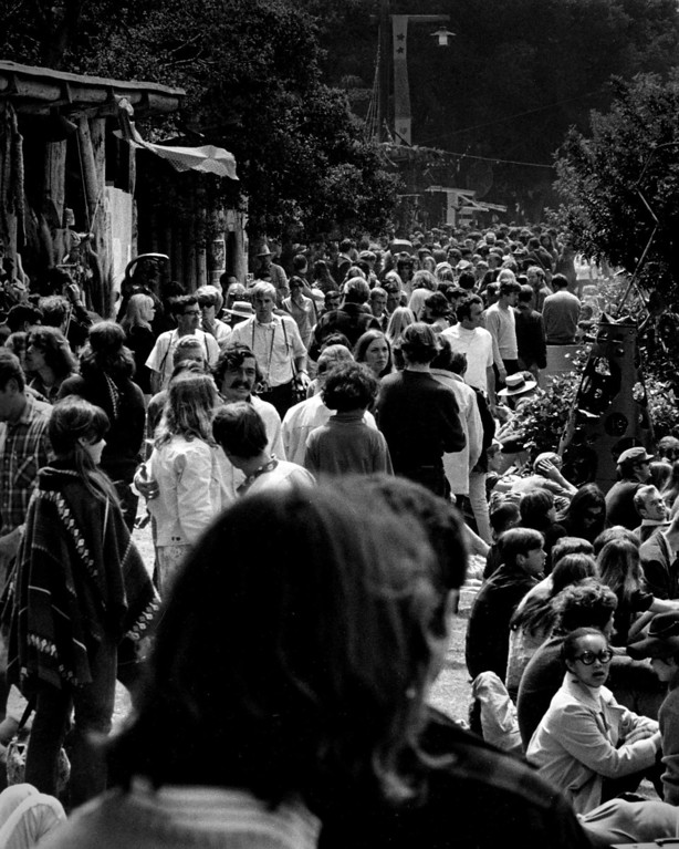 . Large crowds arriving on Sunday, June 18, 1967 at the Monterey Fairgrounds during the Monterey International Pop Festival.  (Monterey Herald)