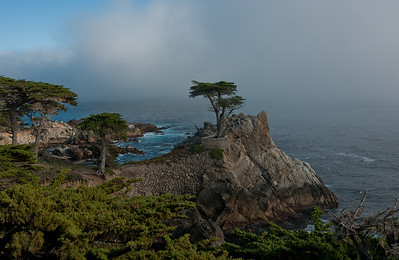 Monterey/Big Sur Spring 2010
