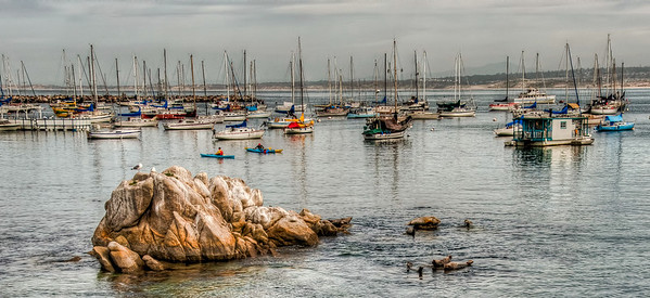 ocean-harbor-sailboats-1-2