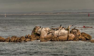 ocean-rocks-kayakers-2