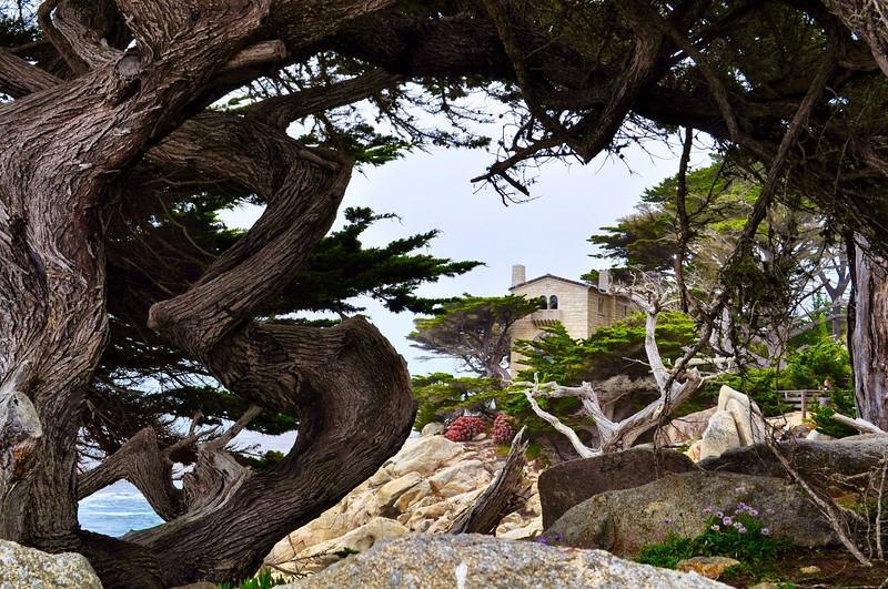 Framed coastal home