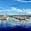 Kayaking the harbor