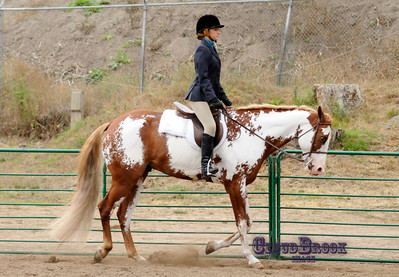 Ca Horseman's Assoc Region 6/ Arena 2