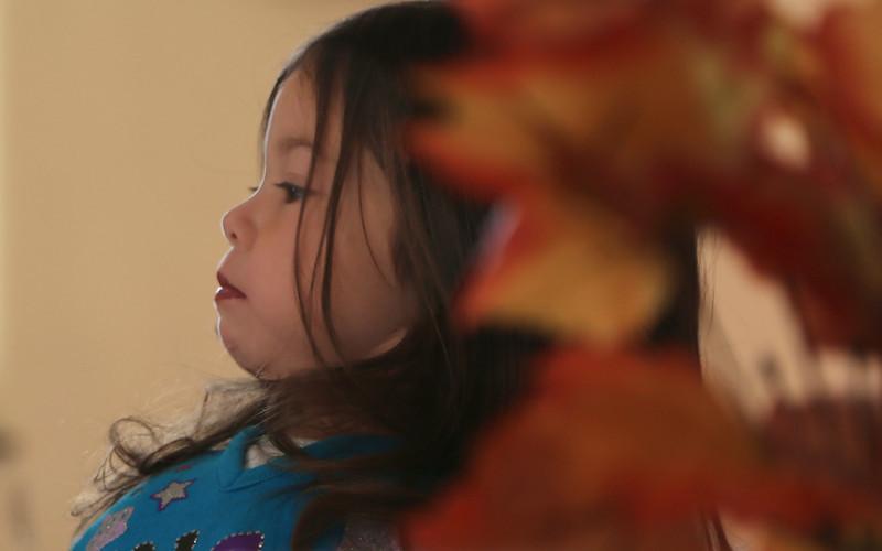 Montessori Thanksgiving  24405