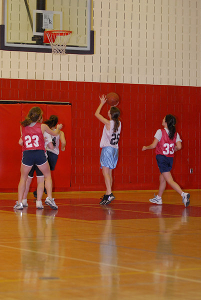 Rec  League Girls BB Feb-3-07-0028 jpg