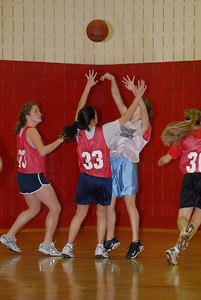 Rec  League Girls BB Feb-3-07-0009 jpg