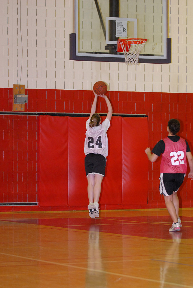 Rec  League Girls BB Feb-3-07-0002 jpg