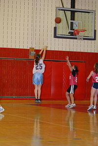 Rec  League Girls BB Feb-3-07-0038 jpg