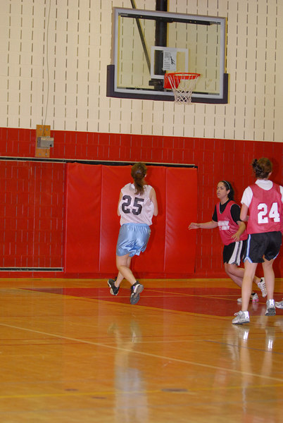 Rec  League Girls BB Feb-3-07-0036 jpg
