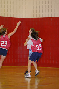 Rec  League Girls BB Feb-3-07-0008 jpg