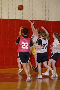 Rec  League Girls BB Feb-3-07-0006 jpg