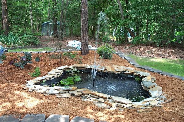 May 2001 Pond