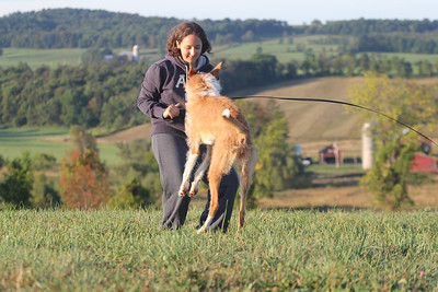 2012 - September - Starkville Coursing
