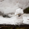 The snowman Bethan spontaneously made for Catherine
