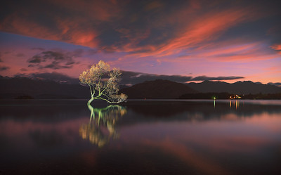 Hai Thi Nguyen - LIGHT PAINTING WANAKA AUTUMN NZ