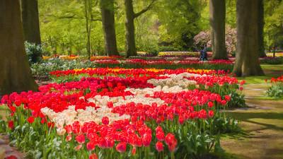 TomCrosley-Tulips