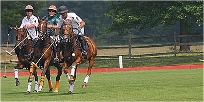 sunil chhatpar-3 horses