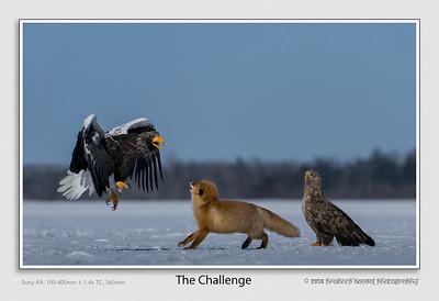 PradeepBansal_02The_Challenge