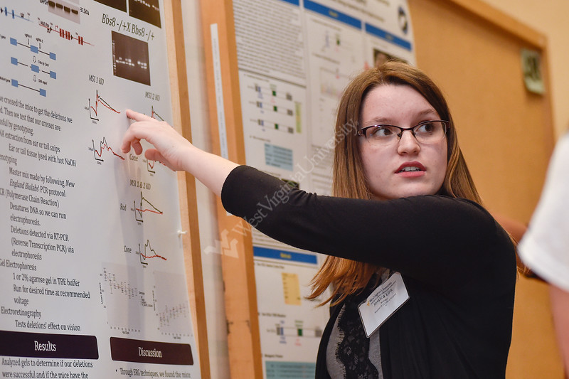 Jessica Link, an undergraduate student of the Eberly College of Arts and Sciences presents her research at the Spring Research Symposium held at the Mountainlair Ballroom on April 13, 2019.