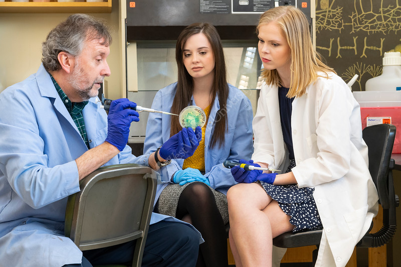 """Jessi Tyo and Caroline Leadmon interact with their professor Dan Panaccione reviewing work which they will present to Congress for Federal funding at the event  """"Posters on the Hill"""", April 29-30. Only 60 students are selected nationwide for this event. April 11, 2019. Photo Greg Ellis"""