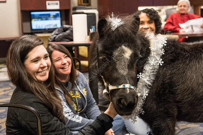 WVU Talent and Culture staff (L to R) Erin Newmyer, Angie Thompson, Cheryl Phillips, take a stress reducing minute with Stormy a miniature therapy horse December 15, 2017. Photo Greg Ellis