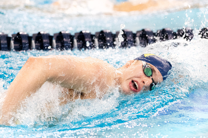WVU's Men and Women Swimming and Diving teams impressed visitors, each team taking home a win against George Washington at the newly constructed Aquatic Center at Mylan Park in Morgantown, WV. Parents attended the special Senior Day event, where the last-year students were commended for their achievements on February 1, 2019. (WVU Photo/Hunter Tankersley)