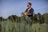 Emily Chilcutt, Environment Geosciences, harvest green onions at Mountain Harvest Farms, in Morgantown, WV.<br /> 34546 WVU Food Story<br /> WVU Photo/ Raymond Thompson<br /> WVU Magazine