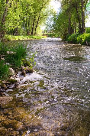 Back Yard Creek