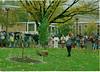 1996 peace tree