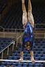 WVU Gymnastics