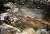 WVU PhD student Eric Marrriam performs water research in Boone county WV., as part of his graduate work  surveying water quality in local streams, August 2011. (WVU Photo/Mark Brown)