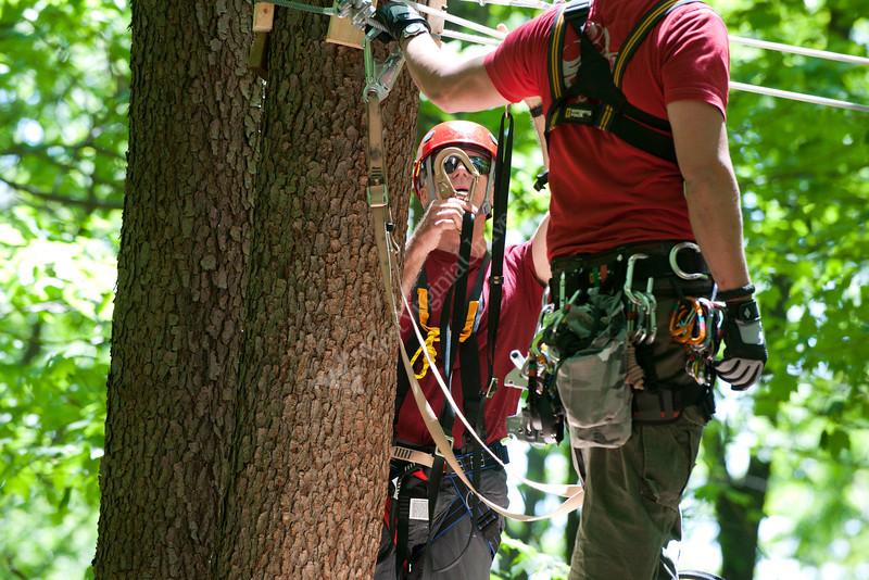 WVU students enjoy the WVU Zipline Canopy tour at the WVU forest developing May 2012 (WVU Photo/Jake Lambuth)