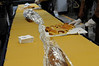 The WVU community celebrates a 65-Foot    Pepperoni Roll at the Mountainlair November 2012(WVU Photo)