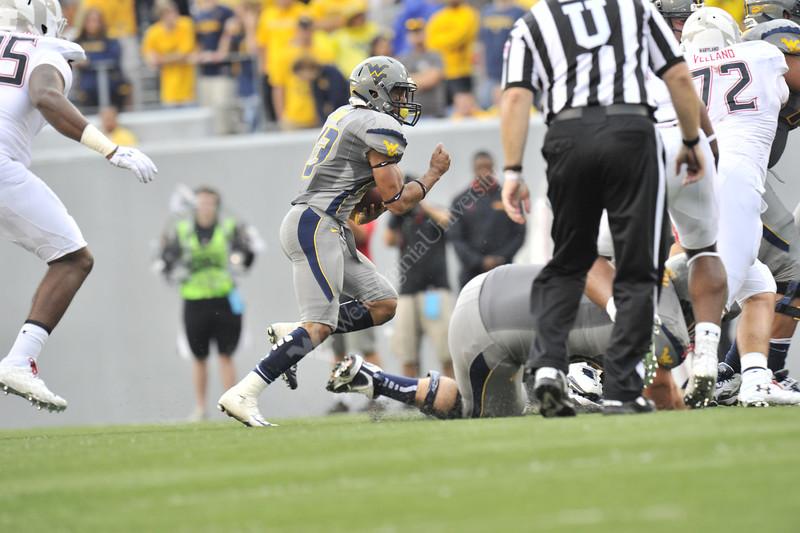 WVU vs Maryland Football action at Mountaineer Field 2012 (WVU Photo/Greg Ellis)