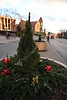 Christmas Wreath Social S 0027 JFS