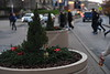Christmas Wreath Social S 0080 JFS