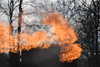 The Mine Training Center in Core, Wv exercises a controlled burn on site February, 23rd 2017.  Working in conjuntion with the Statler College and Extension Services they provide mine and firefighting training.