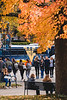 Prospective students and families walk around campus on a perfect fall day.