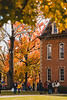 Fall colors on full display next to Martin Hall.