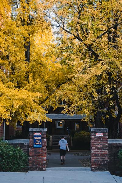 A student walks towards Boreman Hall.
